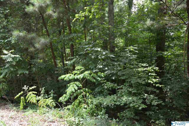 LOT #12 County Road 224, Dutton, AL 35744 (MLS #1123696) :: Capstone Realty