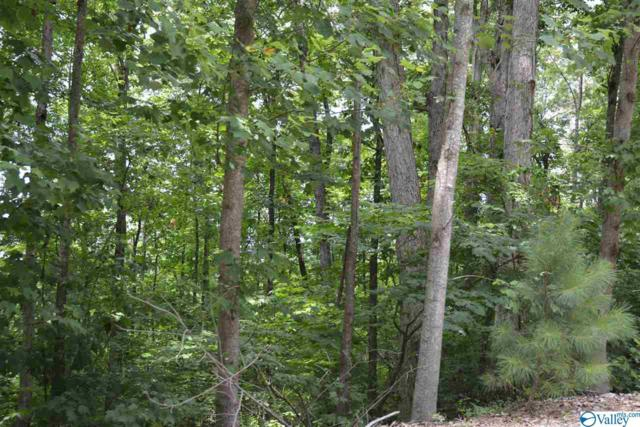 LOT 13 County Road 224, Dutton, AL 35744 (MLS #1123700) :: RE/MAX Distinctive | Lowrey Team