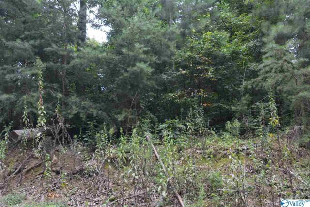 LOT #31 County Road 224, Dutton, AL 35744 (MLS #1123717) :: Eric Cady Real Estate