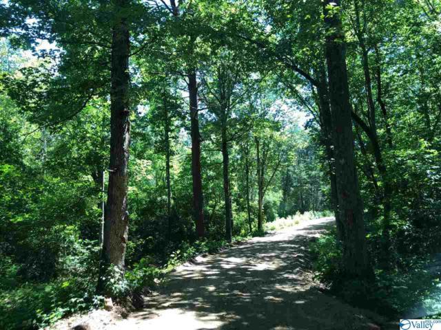 16-13 County Road 850, Collinsville, AL 35961 (MLS #1123790) :: Capstone Realty
