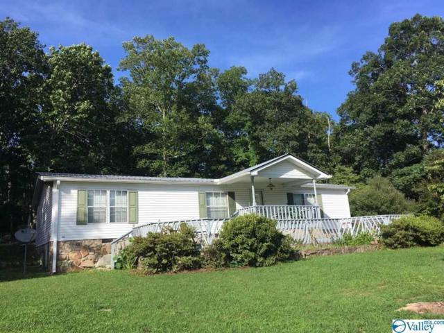 55 Cove Road, Mentone, AL 35984 (MLS #1123873) :: Intero Real Estate Services Huntsville