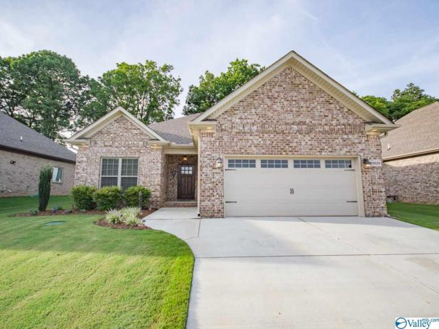 29029 Stonehenge Drive, Toney, AL 35773 (MLS #1123941) :: Amanda Howard Sotheby's International Realty