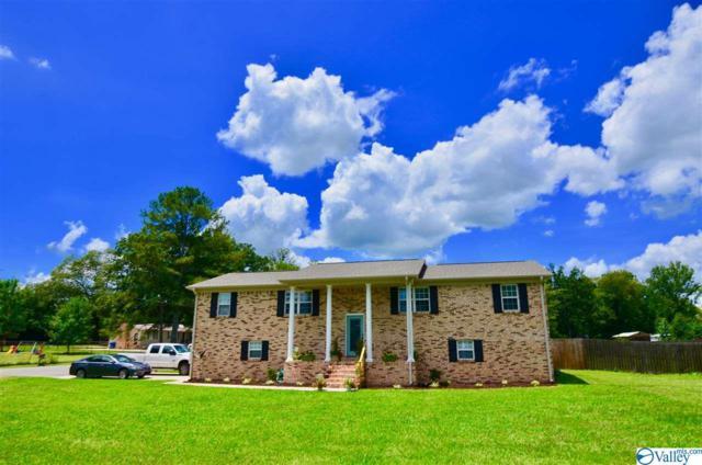 507 Case Avenue, Attalla, AL 35954 (MLS #1123965) :: Intero Real Estate Services Huntsville