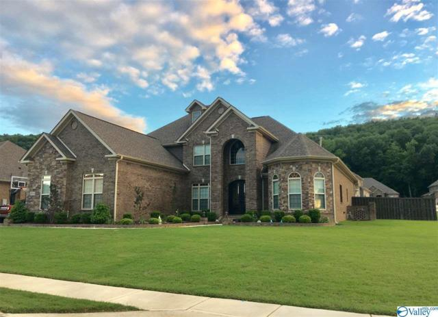 2014 SE Meadow Creek Circle, Owens Cross Roads, AL 35763 (MLS #1123994) :: Intero Real Estate Services Huntsville