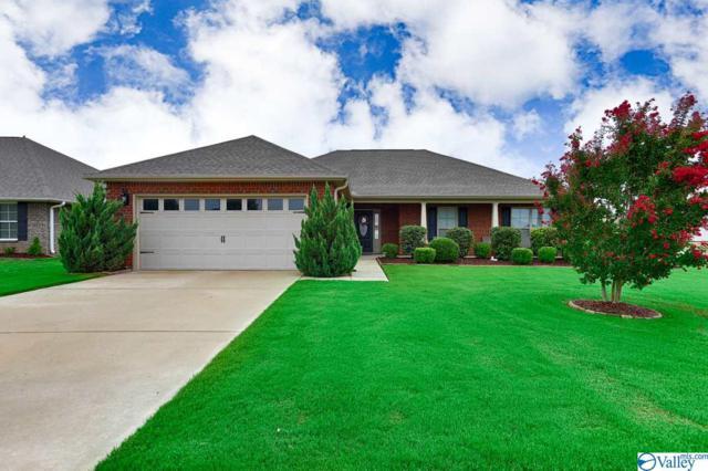 118 Virginia Fern Circle, Madison, AL 35757 (MLS #1124011) :: Intero Real Estate Services Huntsville