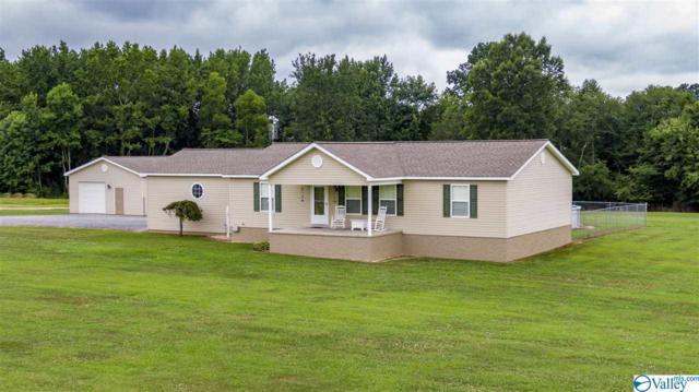 379 Bellview Road, Henagar, AL 35978 (MLS #1124039) :: Intero Real Estate Services Huntsville