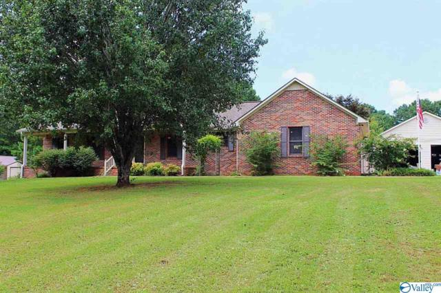 1214 Shoal Creek Road, Decatur, AL 35603 (MLS #1124045) :: Capstone Realty