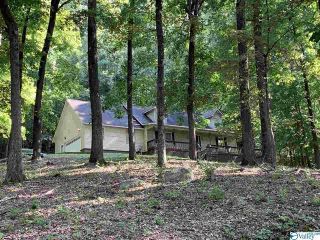 3401 Wyeth Drive, Guntersville, AL 35976 (MLS #1124075) :: Intero Real Estate Services Huntsville