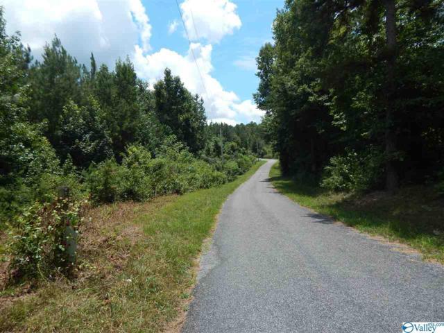 60 County Road 135, Gaylesville, AL 35973 (MLS #1124145) :: Legend Realty