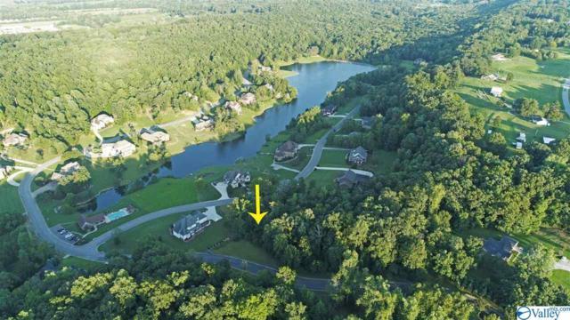 1665 SW Lake Cove Drive, Decatur, AL 35601 (MLS #1124232) :: Amanda Howard Sotheby's International Realty