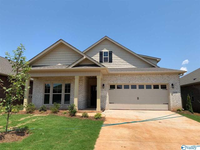 27699 Kosar Crossing, Athens, AL 35613 (MLS #1124558) :: RE/MAX Distinctive | Lowrey Team