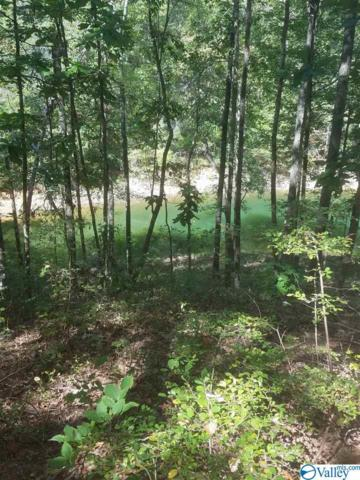 Lot 5 Blue Water Pointe Drive, Jasper, AL 35504 (MLS #1124593) :: Coldwell Banker of the Valley