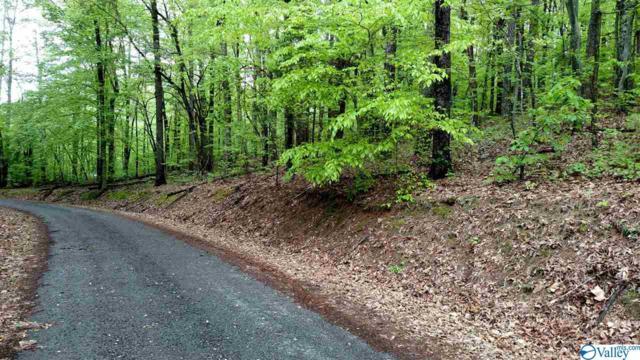 871 Holiday Shores Road, Scottsboro, AL 35769 (MLS #1124689) :: Eric Cady Real Estate