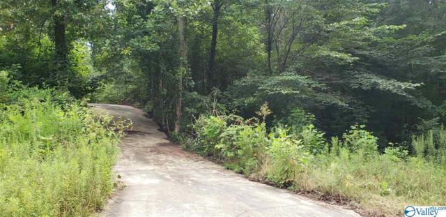 118 Hunters Hill Trail, Toney, AL 35773 (MLS #1124753) :: Amanda Howard Sotheby's International Realty