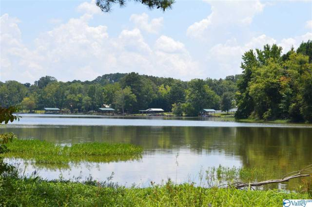 155 County Road 146, Leesburg, AL 35983 (MLS #1124813) :: Amanda Howard Sotheby's International Realty