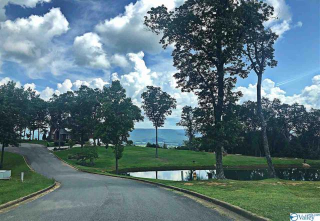 201 Heritage View Circle, Gurley, AL 35748 (MLS #1125004) :: Amanda Howard Sotheby's International Realty