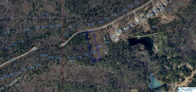 024 County Road 674, Leesburg, AL 35983 (MLS #1125051) :: Amanda Howard Sotheby's International Realty
