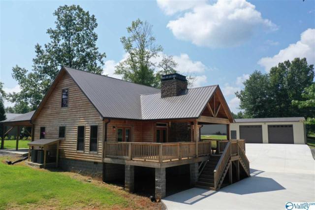 351 Onondaga Circle, Langston, AL 35755 (MLS #1125282) :: Intero Real Estate Services Huntsville