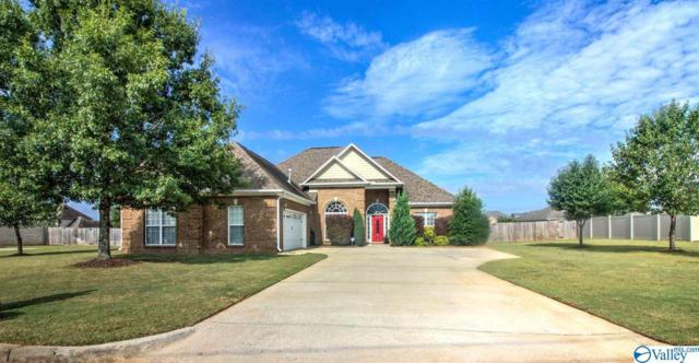 12817 Nani Drive, Madison, AL 35756 (MLS #1125336) :: Amanda Howard Sotheby's International Realty