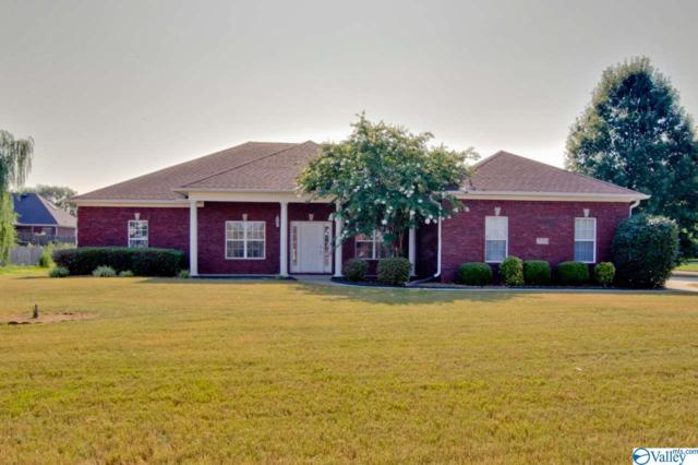 25284 Mahalo Circle, Madison, AL 35756 (MLS #1125386) :: Amanda Howard Sotheby's International Realty