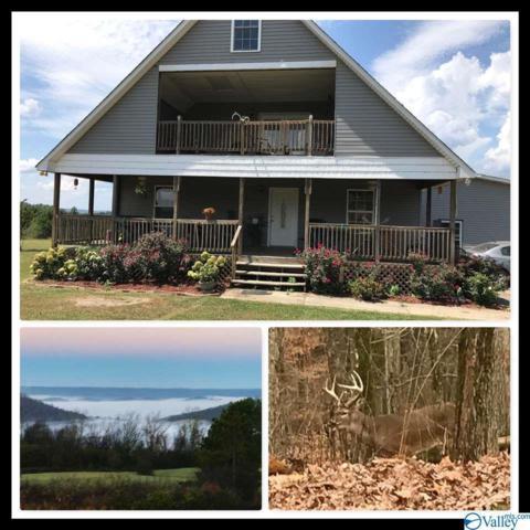 905 Bill Gautney Road, Albertville, AL 35951 (MLS #1125480) :: Intero Real Estate Services Huntsville