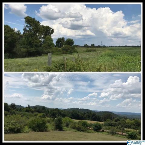 Swords Road, Albertville, AL 35951 (MLS #1125484) :: Intero Real Estate Services Huntsville