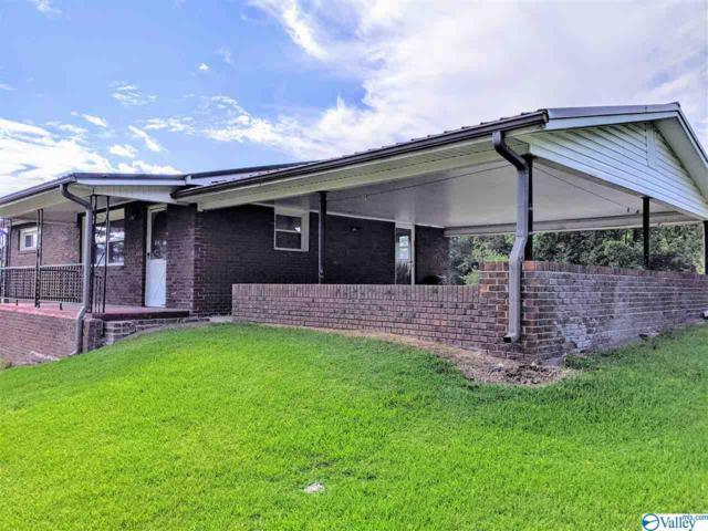 49698 Al Highway 277, Bridgeport, AL 35740 (MLS #1125623) :: Capstone Realty