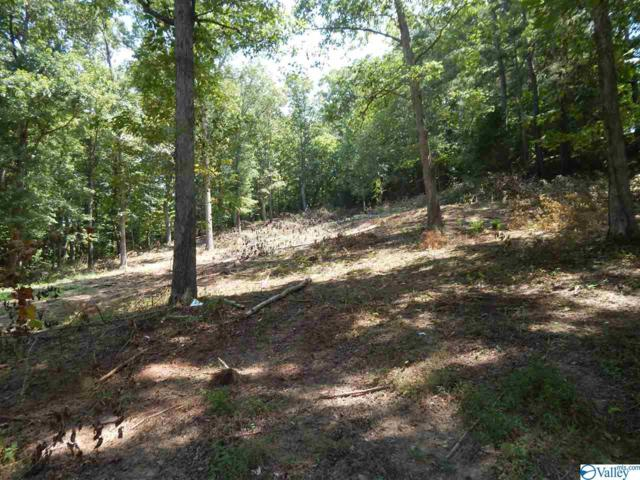 00 Little Ridge Road, Fort Payne, AL 35967 (MLS #1125664) :: RE/MAX Unlimited