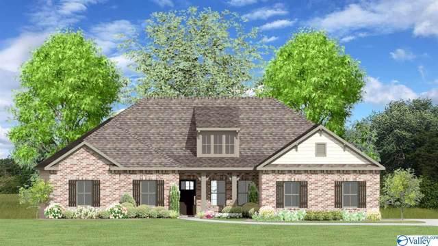 206 Castlepath Drive, Madison, AL 35756 (MLS #1127834) :: Capstone Realty
