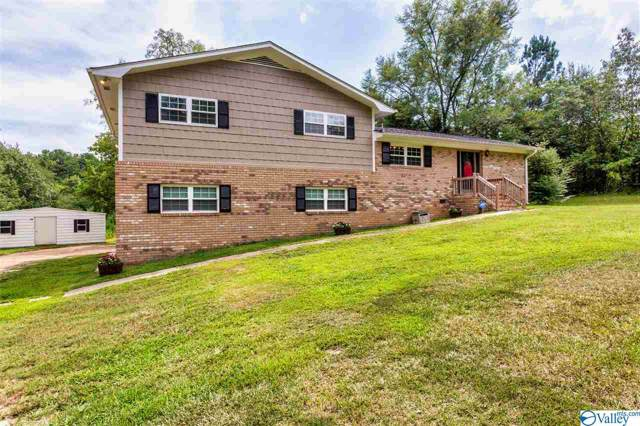 3800 Highway 144, Ohatchee, AL 36271 (MLS #1128190) :: Coldwell Banker of the Valley