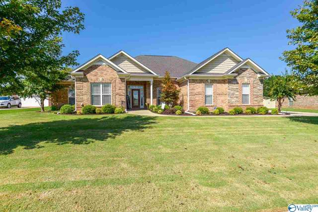 250 Wes Ashley Drive, Meridianville, AL 35759 (MLS #1128216) :: Legend Realty
