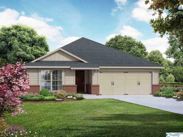 118 Westerbrook Drive, Toney, AL 35773 (MLS #1128521) :: Capstone Realty