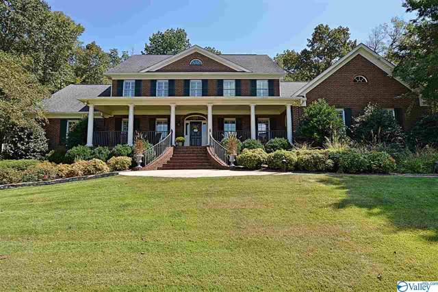 141 Brooks Circle, Brownsboro, AL 35741 (MLS #1128538) :: Amanda Howard Sotheby's International Realty