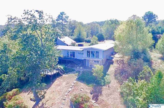 616 County Road 224, Dutton, AL 35744 (MLS #1129027) :: Capstone Realty