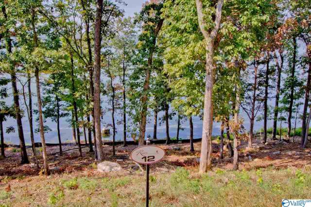 12 Reserve Drive, Guntersville, AL 35976 (MLS #1129082) :: Capstone Realty