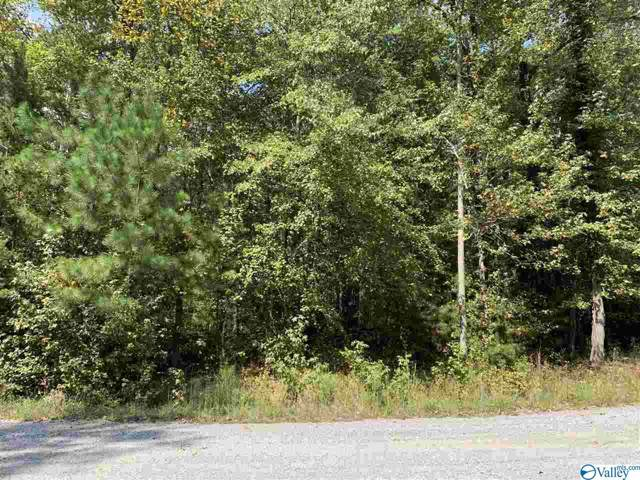 7 County Road 922, Mentone, AL 35984 (MLS #1129438) :: Rebecca Lowrey Group