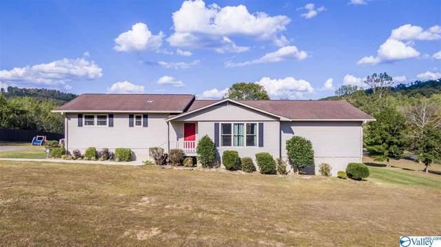 1968 County Road 85, Valley Head, AL 35989 (MLS #1129906) :: Legend Realty