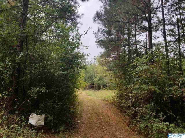1317 County Road 114, Gaylesville, AL 35973 (MLS #1129999) :: Legend Realty