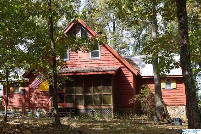 17275 County Road 89, Mentone, AL 35984 (MLS #1130005) :: Legend Realty