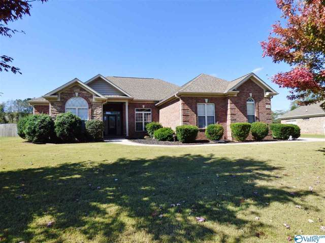 256 Wes Ashley Drive, Meridianville, AL 35759 (MLS #1130262) :: Amanda Howard Sotheby's International Realty