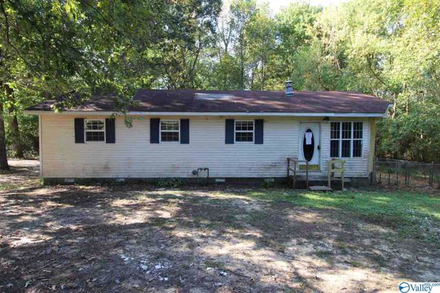 300 Otinger Drive, Horton, AL 35980 (MLS #1130373) :: Intero Real Estate Services Huntsville