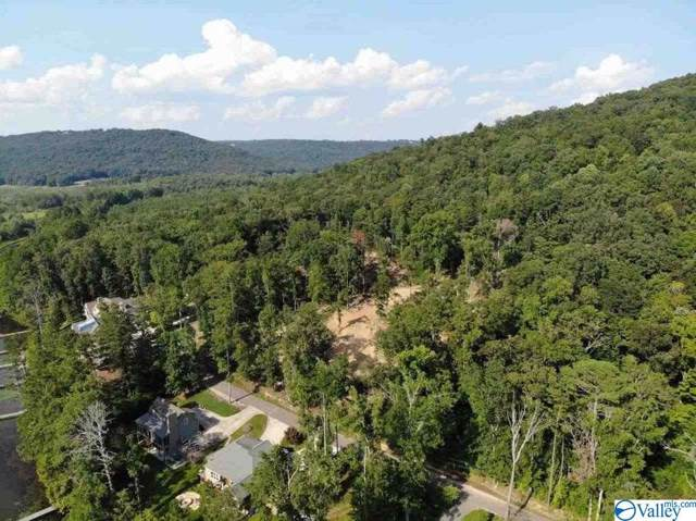 Lot 4 White Elephant Road, Grant, AL 35747 (MLS #1130478) :: MarMac Real Estate