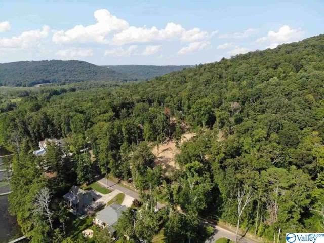 Lot 4 White Elephant Road, Grant, AL 35747 (MLS #1130478) :: Green Real Estate