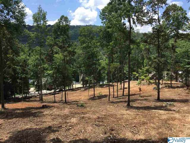Lot 5 White Elephant Road, Grant, AL 35747 (MLS #1130480) :: MarMac Real Estate