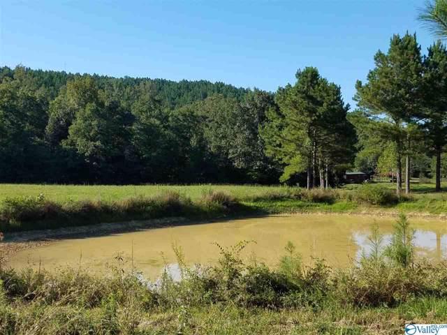County Road 447, Piedmont, AL 36272 (MLS #1130516) :: Amanda Howard Sotheby's International Realty