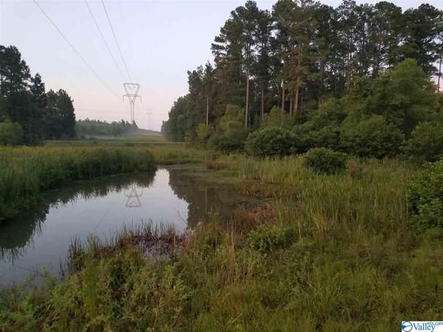 County Road 14, Centre, AL 36272 (MLS #1130517) :: Amanda Howard Sotheby's International Realty