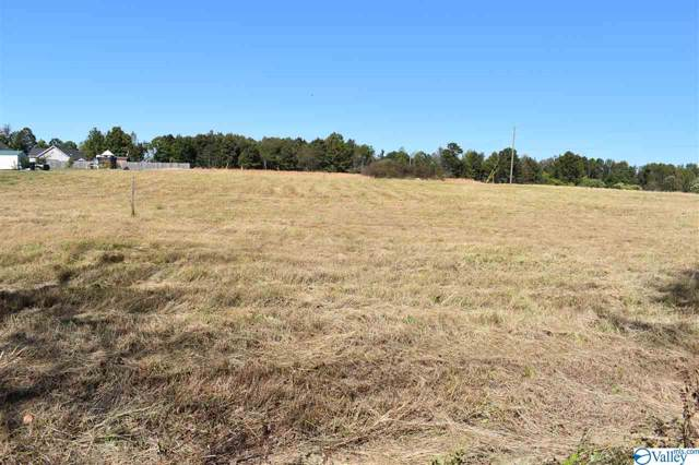lot1 County Road 273, Fort Payne, AL 35986 (MLS #1130577) :: Amanda Howard Sotheby's International Realty