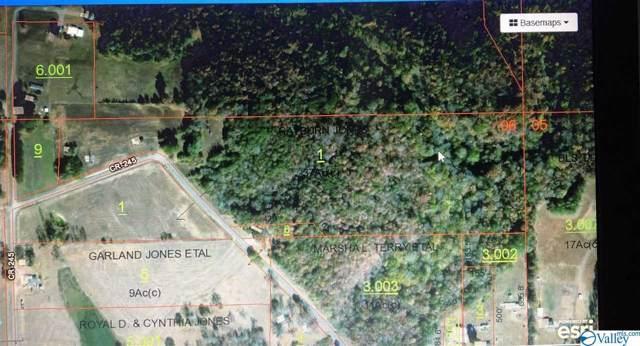 2168 County Road 245, Moulton, AL 35650 (MLS #1130620) :: Capstone Realty