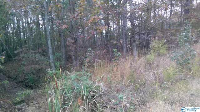 Lot 53 Katie Drive, Toney, AL 35773 (MLS #1131083) :: The Pugh Group RE/MAX Alliance