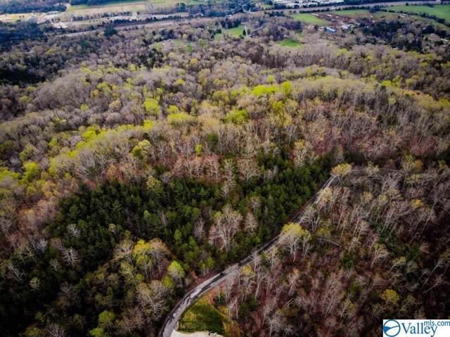 0 Air Castle Drive, Trenton, GA 30752 (MLS #1131451) :: MarMac Real Estate